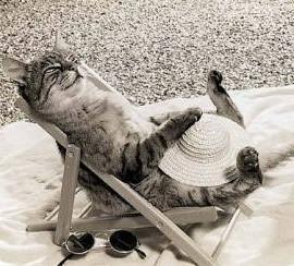 relaxing-on-the-beach-e1406692298659.jpg