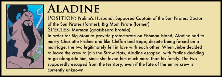 Aladine_One_Piece