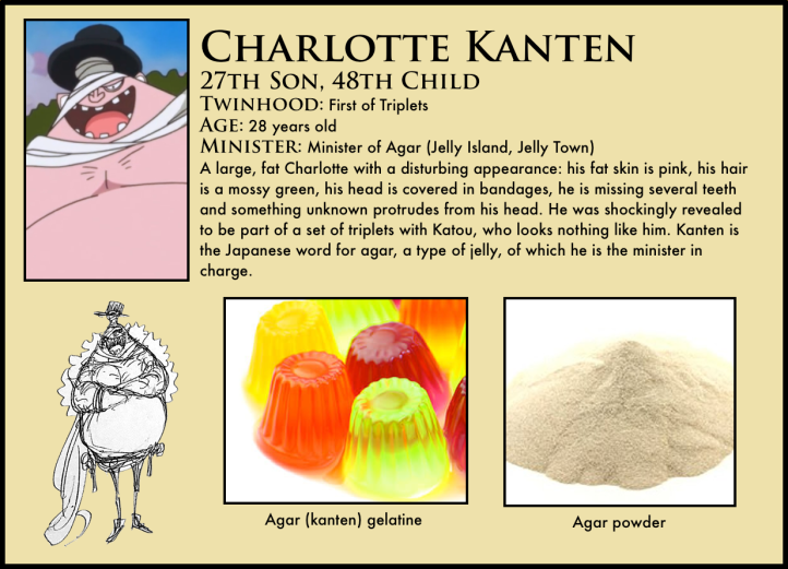 charlotte kanten one piece
