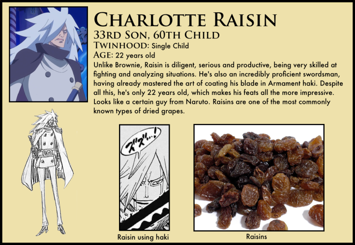 charlotte raisin one piece
